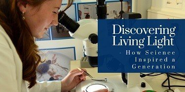 Discovering Living Light – How Science Inspired a Generation