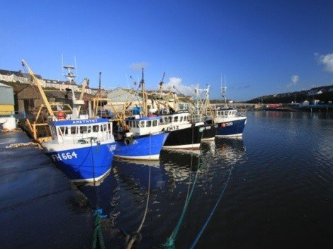 Trawlers at Milford Docks